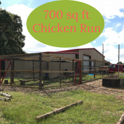 The Chicken Coop