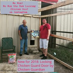 Chicken Guardian personally delivered our prize and set down to visit with us on camera.